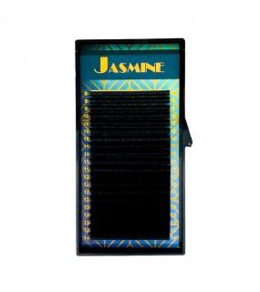 EXTENSII DE GENE JASMINE...